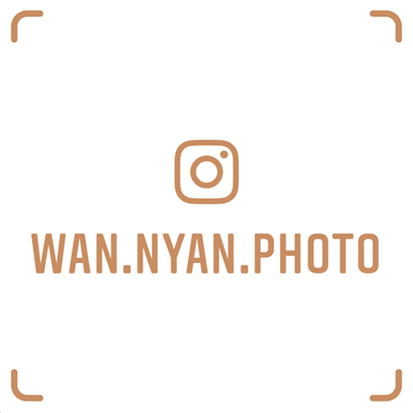 wan.nyan.photo