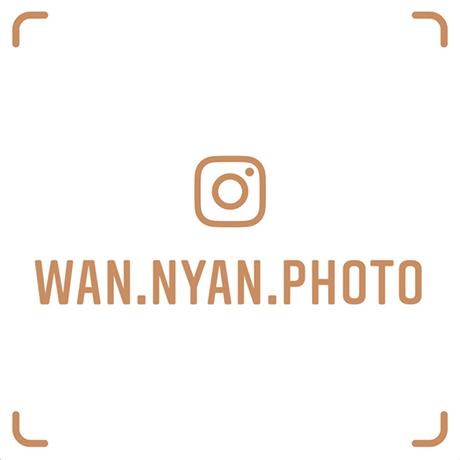 wan.nyan.photo